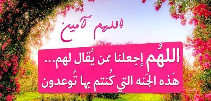529832_375195565911151_1215138578_n.jpg